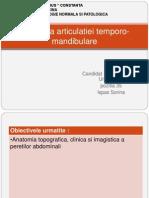 Anatomia Articulatiei Temporo-mandibularea -Ispas Sorina