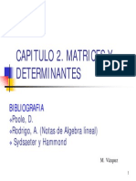 Capitulo 2. Matrices y Determinantes Mercedes v Zquez