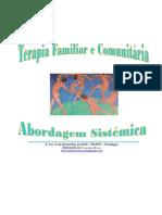 Terapia Familiar e Comunitária - Uma abordagem sistêmica