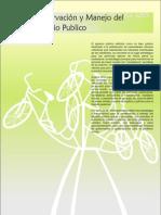 estatutoparaelcontroldelespaciopublico-130910152941-phpapp01