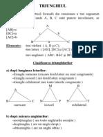 Triunghiul_teorie(1)