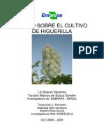 Curso Para Cultivar Higuerilla