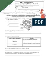 sist_ circulatório 2011-2
