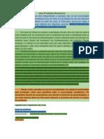 Artigo de opinião modelo para desmembrar - estruturas colorido