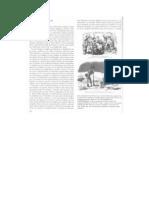 La Guerra de Crimea y La Cuestion de Oriente El Segundo Imperio Frances