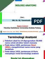 Terminologi Anatomi
