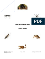 Underground Critters Preview
