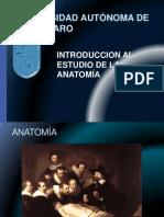 Tema i Anat Generalidades Vi