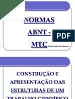 3 A CONSTRUÇÃO DE TCC E PLÁGIO ACADÊMICO