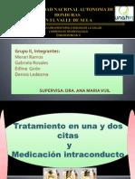 Presentacion Endodoncia II Dennis