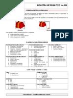 RDP BOL 006 Como Identificar El Riesgo
