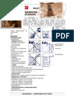 RDP-BOL-015-Prevención en Zanjas