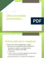 Otras Anomalias Placentarias