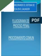 Flujograma_Derecho Procesal Penal II
