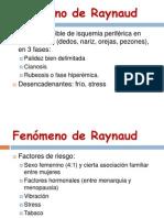 raynaud-121030130739-phpapp01