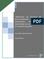 Aplicacion de tecnicas de biorremediacion para el trat de res ind con alto contenido de metales pesados.pdf