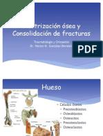 1. Cicatrización ósea y Consolidación de fracturas