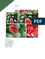 Classificação Cientifica Frutasfss
