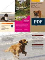 Cornwall Dog Friendly Beaches