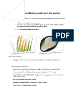 Rice protein -Axiom Foods Reveals Reality