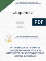 INTERFERÊNCIA DE DIFERENTES CONDIÇÕES DE LUMINOSIDADE NA FOTOSSÍNTESE