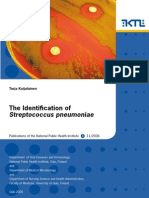 The Identification of S. Pneumonia