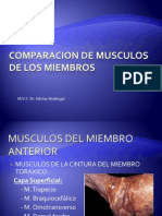 Miologia Comparada Del Esqueleto Apendicular 04