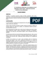 Plan de Trabajo - Mercado Vinocanchon