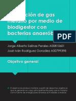 Presentación final gas metano