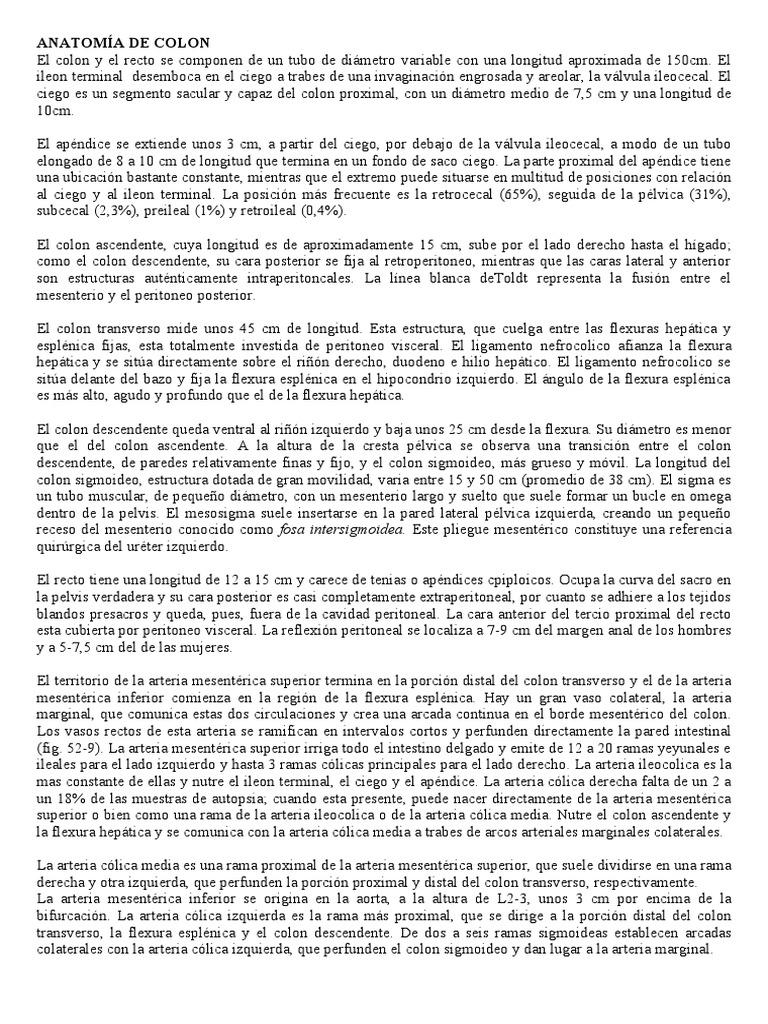ANATOMÍA DE COLON