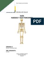 Guía huesos y sus funciones
