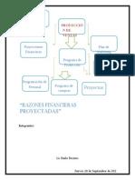 RAZONES FINANCIERAS PROYECTADAS 222222.doc