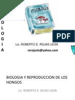 Clase 01 Biologia y Reproduccion de Los Hongos