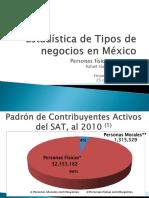 Estadística de Tipos de negocios en México