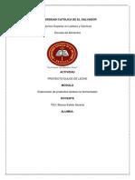 PROYECTO DULCE DE LECHE.docx