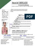 historianaturaldetuberculosis-110410000235-phpapp01.ppt
