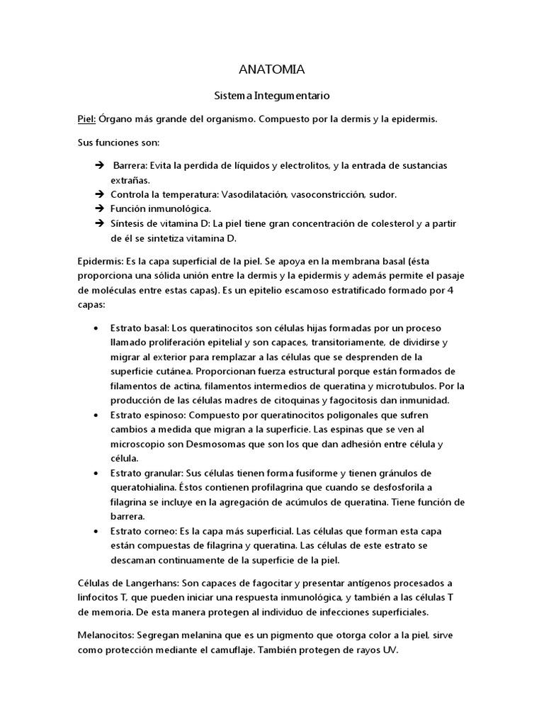 Contemporáneo Queratina Anatomía Definición Cresta - Imágenes de ...