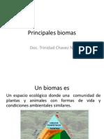 Principales Biomas 05-01-13