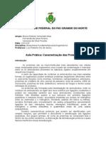 Relatório - Caracterização das Proteínas - Final