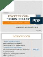 1 Lesion Celular