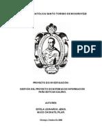 Informe Global Proyecto GPSI