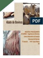 Abate de Bovinos 2009[1]