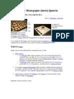 Escargot de Bourgogne