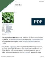 Tinospora Cordifolia - Wikipedia