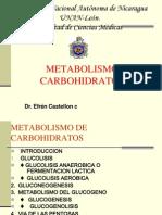 Metabolismo de Carbohidratos Medc13