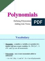 Polynomial Nt 1