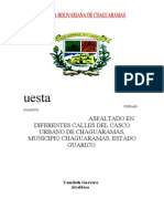 Proyecto Asfaltado Pedro Zaraza