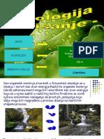 Disanje Dusankostic Jasminamiljkovic 120312094249 Phpapp02