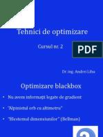 Tehnici de optimizare 2