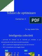 Tehnici de optimizare 3